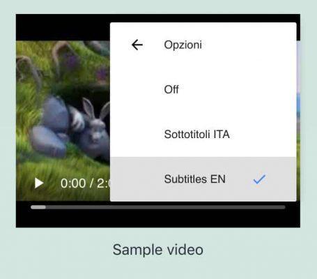 Impostazioni utente dei sottotitoli video